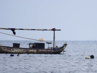 Nelayan Pencari Kepiting Kecil dengan Cara Menyelam
