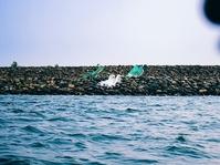 KNTI: BPN Seharusnya Bisa Penuhi Permintaan Anies Soal HGB Pulau D