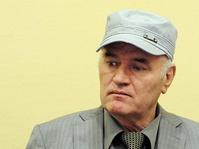 Jenderal Jagal Bosnia Dipenjara Seumur Hidup atas Kasus Genosida