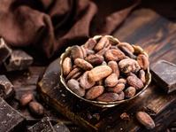 Dunia Selalu Membutuhkan Cokelat