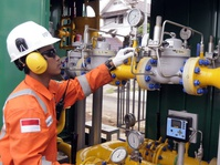 RUPSLB Setujui Pengalihan Saham PGN ke Pertamina