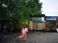 Hutan Mangrove Muara Angke