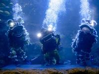 Atraksi Barongsai di Akuarium Sea World