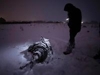 Kecelakaan Pesawat di Iran Tewaskan 66 Orang
