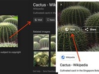 Google Persulit Simpan Gambar Tanpa Izin