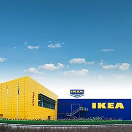 Dari Utara Eropa ke Seluruh Dunia: Cerita Sukses IKEA