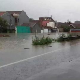 Jasa Marga Catat 12 Lintasan Tol di Jabodetabek Terendam Banjir