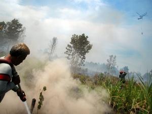 BMKG: Belasan Titik Panas Bermunculan di Riau