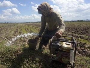 Pengamat Khawatir Perubahan Iklim Pengaruhi Sektor Pertanian