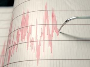 Gempa Bumi 4,4 SR di Jember Dinyatakan Tak Berpotensi Tsunami