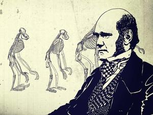 Menghujat dan Memuja Teori Evolusi Darwin