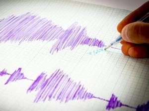 Gempa Papua 7,6 SR Disertai Susulan Hingga 4 Kali Pagi Ini