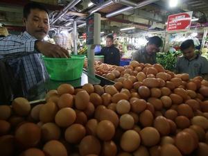 Pemprov DKI Tegaskan Isu Peredaran Telur Palsu adalah Hoaks
