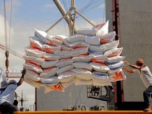 Kemendag Tekankan Impor Beras untuk Isi Stok Gudang Bulog