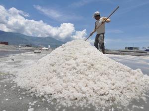 Garam Impor 676 Ribu Ton Segera Tiba, Sebagian dari Cina dan India