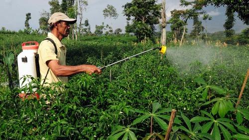 Pertanian Ramah Lingkungan Tirtoid