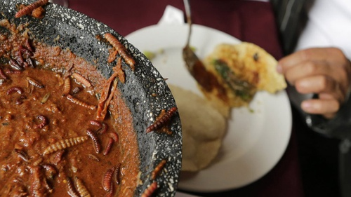 Mengenal Kuliner Ekstrem Memahami Dunia Yang Tak Homogen