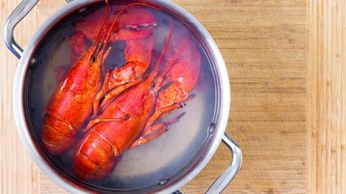 Hasil gambar untuk Masakan Crab or Lobster Khas Inggris