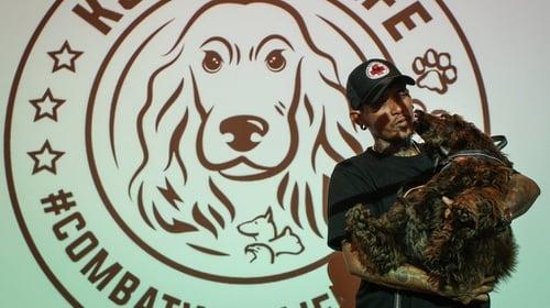 44++ Jenis anjing pelacak polisi indonesia terbaru