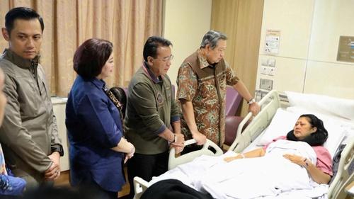 Mengenal Penyakit Kanker Darah Yang Diderita Ani Yudhoyono