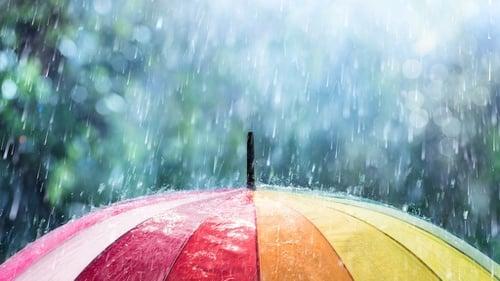 Peringatan Dini Bmkg Jawa Timur Prakiraan Cuaca Palembang Tirto Id