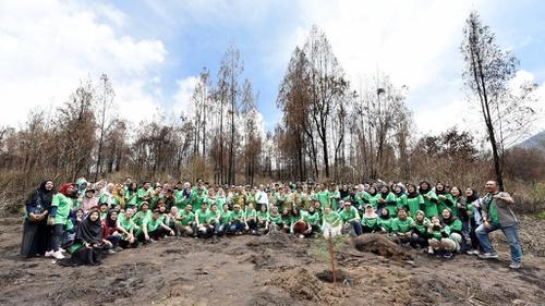 Konservasi Taman Wisata Alam Kawah Ijen Tirto Id