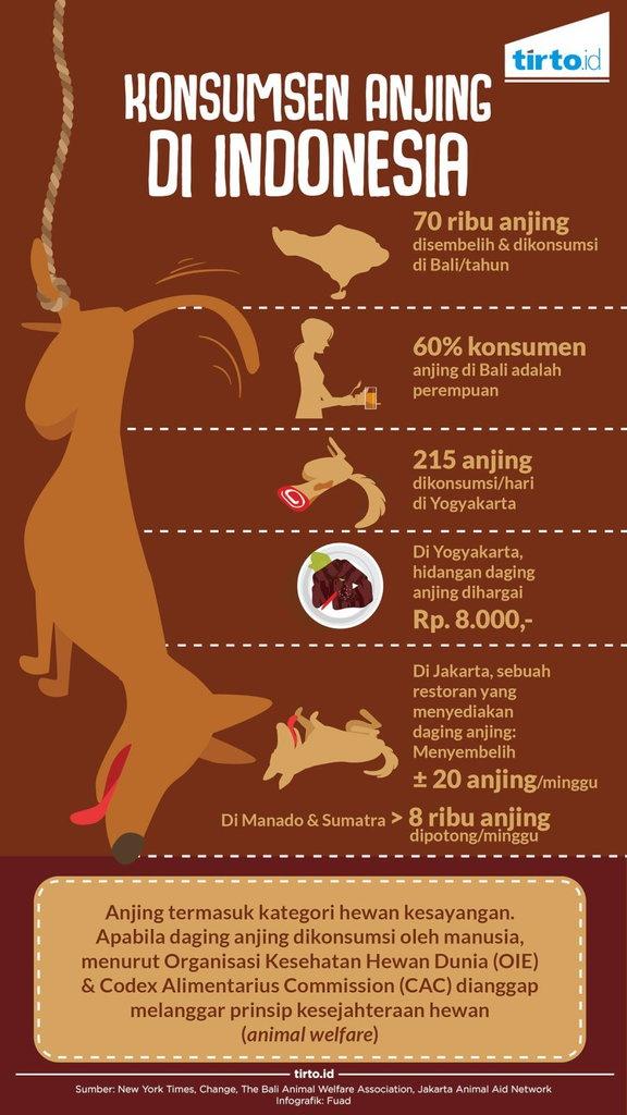 Bahaya Mengonsumsi Daging Anjing