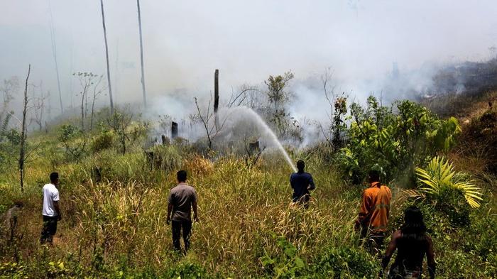 Ilustrasi kebakaran. . ANTARA FOTO/Irwansyah Putra