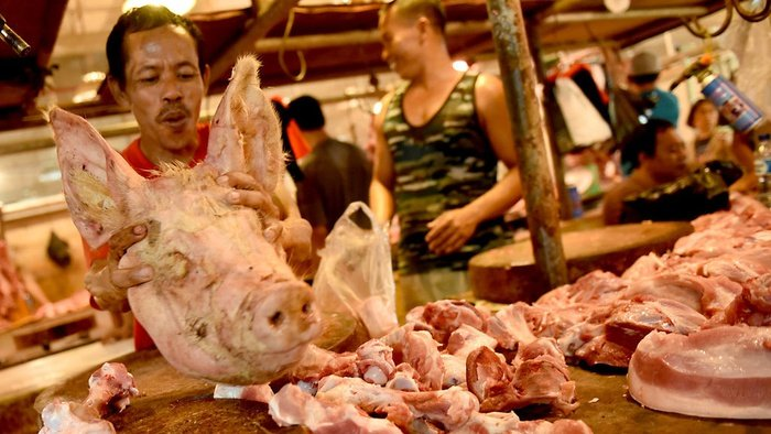 Wabah ASF di Cina & Potensi Pasar Ekspor Daging Babi bagi Indonesia