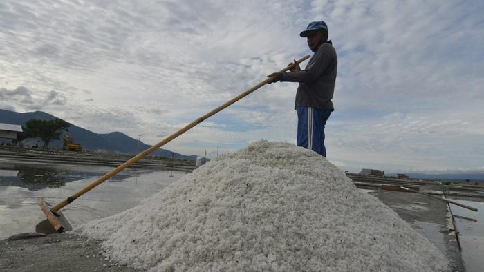 Petani memanen garam di Kawasan Penggaraman Talise di Palu, Sulawesi Tengah, Selasa (19/1/2021). ANTARA FOTO/Mohamad Hamzah/aww.