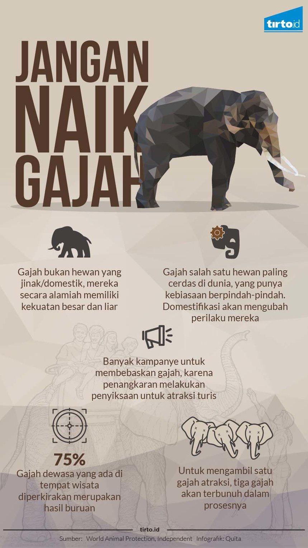 Jangan Tunggangi Gajah!