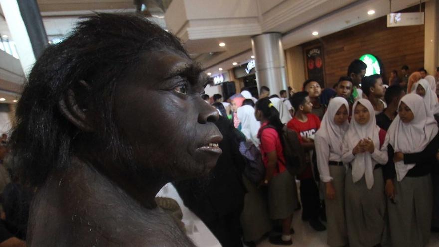Manusia Purba Tertua Di Indonesia Ditemukan Di Bumiayu Brebes Tirto Id