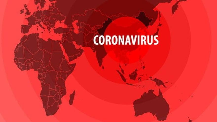 Update Corona Global Di Dunia 29 Juni 2020 Riset Vaksin Terbaru Tirto Id